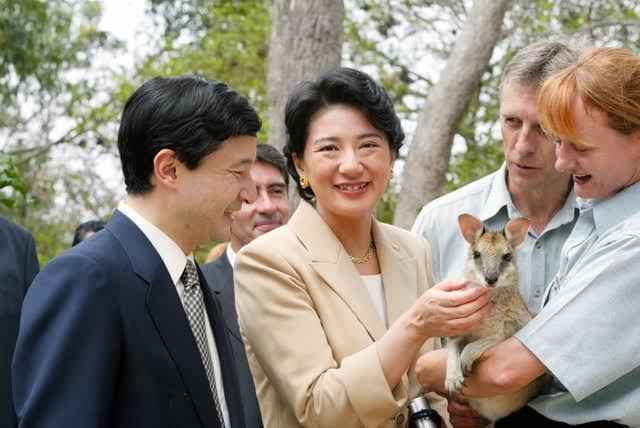 動物を触る雅子様