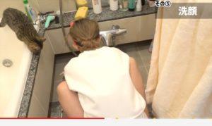 浴槽にのぼるかねこあやの猫